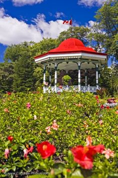 On the Spring Garden Road in the Halifax Public Gardens in Nova Scotia, Canada you will arrive at the Band Rotunda surrounded by blossoming Spring flowers. Gazebo Pergola, Garden Gazebo, Most Beautiful Gardens, Beautiful Places, Halifax Public Gardens, Gardens Of The World, Newfoundland And Labrador, Prince Edward Island, Garden Photos