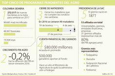 Mataderos, FNG y Colombia Siembra, entre los temas pendientes del agro Goals, Ear Jewelry, Colombia