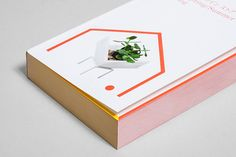 Minke Design Store Catalog by Studio Lin, via Behance