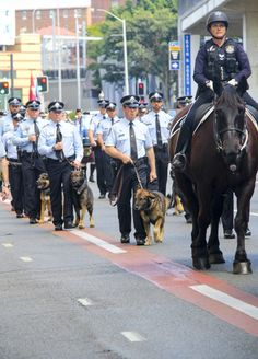 Police pause to remember fallen colleagues - Queensland Police News