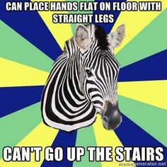 If you can do a toe touch with no problem, but think stairs are evil... | Signs You Might Be A Zebra