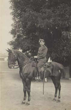 Ever Valiant Vintage 1910s War Horse and by AllHorseVintage