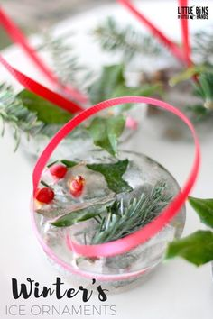 Winter Outdoor Ice Ornaments with Natural Materials Winter Solstice Activity for Kids