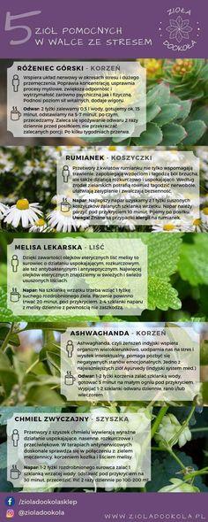 Gardening, Fruit, Garten, Lawn And Garden, Garden, Square Foot Gardening, Garden Care, Horticulture