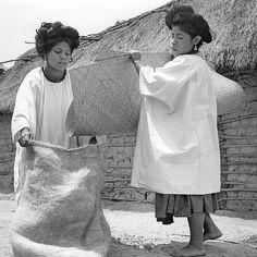 "Juan Rulfo - ""Mujeres recogiendo café"", 1956"