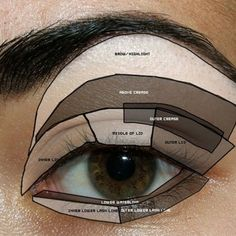 map of how to apply eye make-up. I know what I'll be doing tonig Neat little map of how to apply eye make-up. I know what Ill be doing tonight !Neat little map of how to apply eye make-up. I know what Ill be doing tonight ! Basic Eye Makeup, Blue Eye Makeup, Skin Makeup, Makeup Eyeshadow, Smokey Eyeshadow, Korean Makeup, Eyeshadow Palette, Dramatic Eyeshadow, Prom Makeup For Brown Eyes