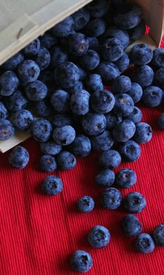 Red  Blue #Blueberries