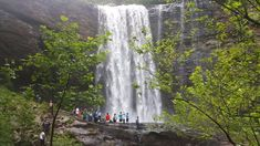 Lula Lake Falls In Georgia Is The Niagara Falls We Never Knew We Had Waterfalls In Georgia, Waterfall Sounds, Amicalola Falls, Piedmont Park, Live Oak Trees, Lookout Mountain, Waterfall Hikes, On The Road Again, Stone Mountain