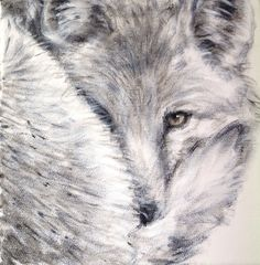 Filippo's fox,acrilic on canvas,cm 25x25