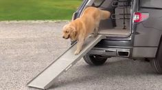 The WeatherTech® PetSTEP® folding pet ramps were designed for the comfort of our furry friends and their handlers.  The PetSTEP® and HalfSTEP® were created with superior design and quality for those pet lovers who need a ramp for their higher vehicles, vans or stair replacement.