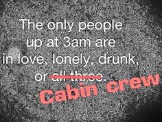 Airline Reservation Online Money Saving Tips Flight Attendant Quotes, Airline Humor, Aviation Humor, Aviation Quotes, Airline Reservations, Aviation World, Fly Guy, Come Fly With Me, Work Humor