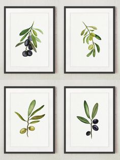 Black Olive Fine Art Print Set of 4 @Etsy #olive #olives #watercolor #set4 #kitchenprint #kitchenart #olivetree