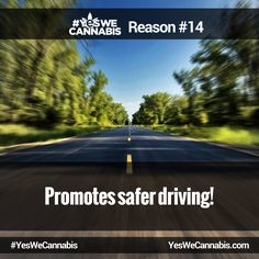 Promotes safer driving! - http://ywc.ec/why14  #YesWeCannabis