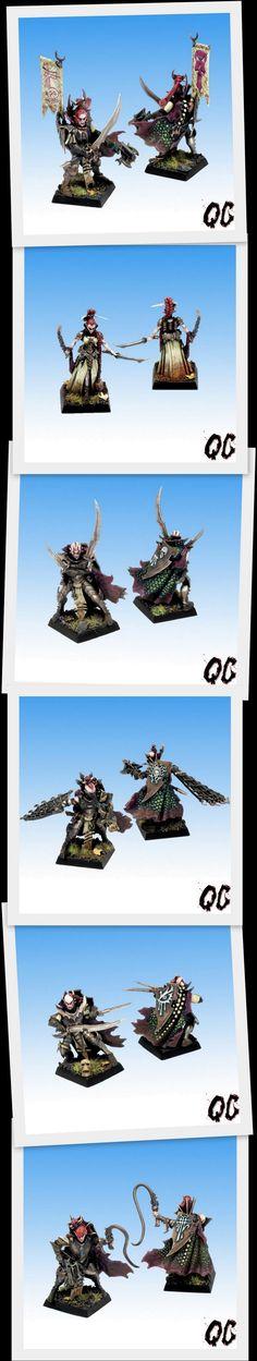 quidamcorvus dark elves (heroes)