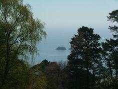 Lovely view, NT Coleton Fishacre, Devon