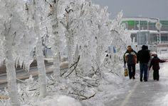 Schnee und Starkwind: Extremwetter lässt Teile des slowenischen Stromnetzes zusammenbrechen