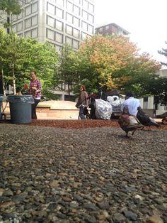 O'Bryant Square (on Stark near food carts) Visit Portland, Food Carts, Patio, Outdoor Decor, Inspiration, Biblical Inspiration, Inspirational, Inhalation, Terrace