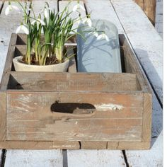 Finally the suns out and we are potting some pretty spring flowers and getting ready for springtime.  You can buy these cute compartment boxes on smugfox.co.uk