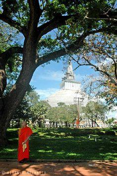 Ruwanweli Maha Seya, Anuradhapura, Sri Lanka (www.secretlanka.com)