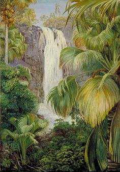 Waterfall in the Gorge of the Coco de Mer, Praslin, Seychelles