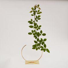 Image of Vase 141 - Edging Over Vase