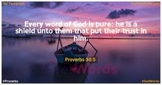 Every word of God is pure: he is a shield unto them that put their trust in him. Famous Bible Verses, Popular Bible Verses, Proverbs 30 5, Verses About Love, Saint Matthew, Isaiah 55, Word Of God, Psalms, Feelings