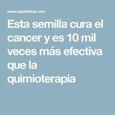 Esta semilla cura el cancer y es 10 mil veces más efectiva que la quimioterapia
