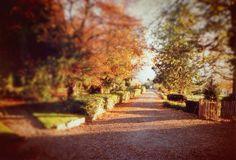 Old Things, Country Roads, Fire, Earth, Seasons, Autumn, Garden, Fall, Garten