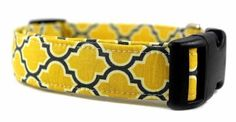 Bow Wow Couture Dog Collar Barcelona in Yellow available at www.ZoePetSupply.com