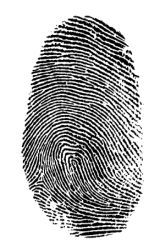 Science Project - Do family members have similar finger prints?