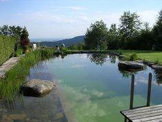 Piscine naturelle: où le chlore et les autres substances chimiques utilisées pour l'entretien de la piscine sont remplacés par des solutions écologiques.