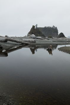 Ruby West Beach, Olympic National Park by Jeff Few