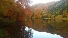 Check out this entry in Show us what you love about Yorkshire to win!!  Photo caption: Outstanding beauty throughout