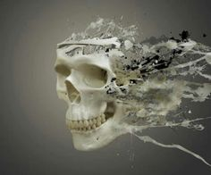 Disintegrating Skull Ultra HD Desktop Background Wallpaper for UHD TV : Tablet : Smartphone Hd Widescreen Wallpapers, Hd Wallpaper Desktop, Skull Wallpaper, Wallpaper Backgrounds, Crane, Original Wallpaper, Simple Backgrounds, Wallpaper Pictures, Skull And Bones