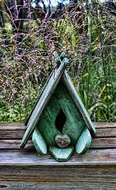 Bird house with grass background by Sandra Foster ©.  Can be purchased as a card or prints on my Red Bubble site.