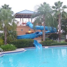 Waterslide at the Hilton Orlando Hotel, Florida, USA Orlando Resorts, Florida Usa, Sea World, Universal Studios, Hotel Reviews, Disney, Outdoor Decor, Travel, Voyage