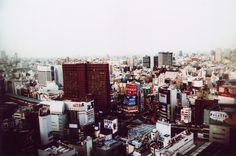 Japan / photo by Sean Lotman