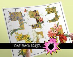 Vintage Floral Notes Images - Printable and Digital Images Flower Images with Cards - Digital Scrapbooking Flower Images
