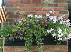 2016 flower boxes