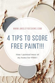 Ansley Designs: 4 Tips for Scoring FREE Paint!