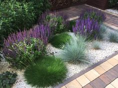 Ewa Szumowska's photo. shed landscaping shed la … - Modern Shed Landscaping, Small Front Gardens, Garden Stairs, Gravel Garden, Small Garden Design, Flower Beds, Garden Planning, Garden Inspiration, Outdoor Gardens