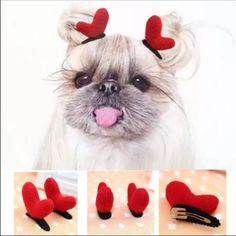 Red Bows For Your Long Hair Doggie