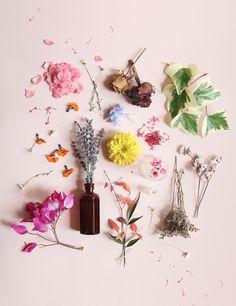 spring colors mood board
