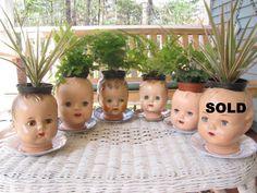 Doll head planters. LOL!