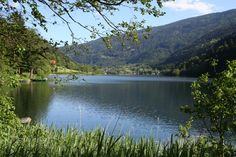 Waginger See - Bayern (Traunreut)