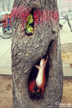 In China, public trees have been transforming into beautiful works of art thanks to 23-year-old art student Wang Yue. With her friend Li Yue, aka Belladrops, documenting her progress, the artist has garnered much attention for her creative public art which has turned the streets of Shijiazhuang into a delightful sort of pop-up gallery.