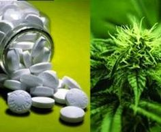 cannabis as an exit drug to addiction, rather than a gateway drug as ...
