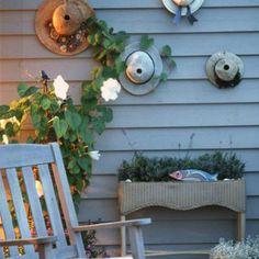 Creature Comforts <br /> - Dune Garden - Coastal Living