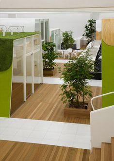 TBWA \ HAKUHODO Inspirational Offices   Tokyo