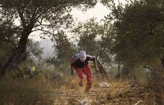 October 22, 2008 A Palestinian ran away from Israeli border police during a protest against Israel's separation wall in the West Bank village of Nilin Wednesday. Israel says the barrier is necessary for security, while Palestinians call it a land grab. (Bernat Armangue/Associated Press)